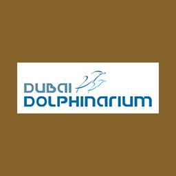 dubai-delphinium