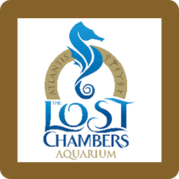 lost-chamber